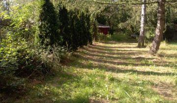 Działka leśna Dzbądzek. Zdjęcie 1