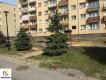 Mieszkanie Wolsztyn, ul. S�owackiego