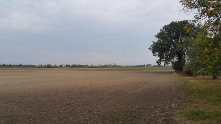 Działka rolna Florkowizna